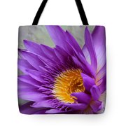 Passionate Purple Water Lily Tote Bag