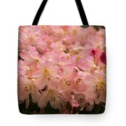 Pastel Coral Azaleas Refreshed By The Rains Tote Bag