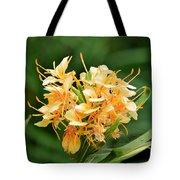 Pastel Peach Petals Tote Bag