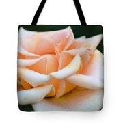 Pastel Peach Rose Tote Bag