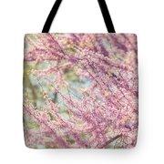 Pastel Pink Flowers Of Redbud Tree In Springtime  Tote Bag by Lisa Russo