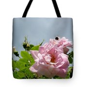 Pastel Pink Roses With Bee Tote Bag