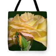 Pastel Rose Ruffles Tote Bag
