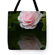 Pastel Satin  Tote Bag