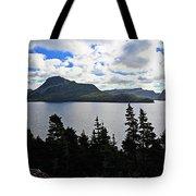 Pastoral Scene By The Ocean Panorama Tote Bag