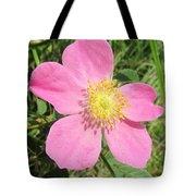 Pasture Rose Rosa Carolina Tote Bag