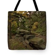 Pastures Past Tote Bag