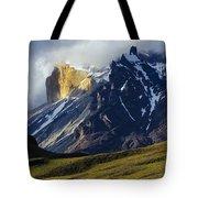 Patagonia Magical Space Tote Bag