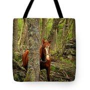 Patagonian Packhorse Tote Bag