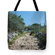 Path Among Olive Trees Tote Bag