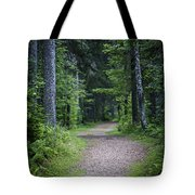 Path In Dark Forest Tote Bag by Elena Elisseeva