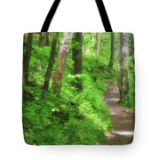 Path In The Forest Tote Bag by Jill Lang