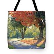 Path Of Change Tote Bag