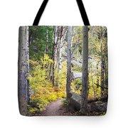 Path Of Peace Tote Bag