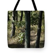 Path Out Tote Bag