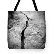 Path Taken Tote Bag