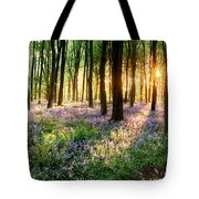 Sunrise Path Through Bluebell Woods Tote Bag