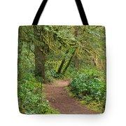 Path Through The Rainforest Tote Bag