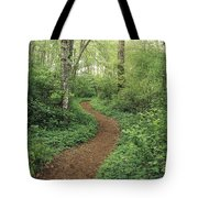 Path Through Woods Tote Bag