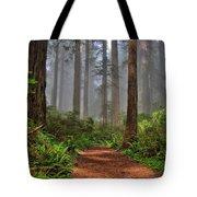Path Thru The Redwoods Tote Bag