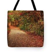 Path Thru The Woods Tote Bag