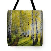 Path To Autumn Tote Bag