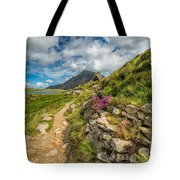 Path To Lake Idwal Tote Bag by Adrian Evans