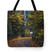 Path To Multnomah Falls Tote Bag