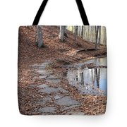 Path To Somewhere Tote Bag