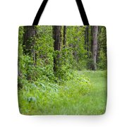 Path To The Green Forest Tote Bag