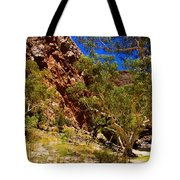 Path To The Gum Trees And Waterhole Tote Bag