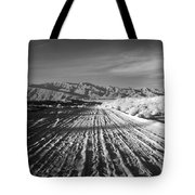 Path To The Point. Tote Bag