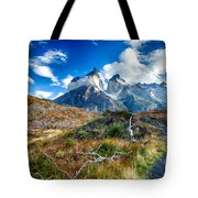 Path To Torres Del Paine Tote Bag
