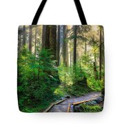 Pathway Into The Light Tote Bag