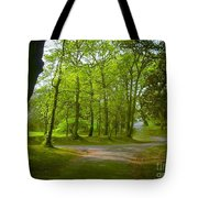 Pathway Through The Trees Tote Bag