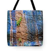 Pattern On Wet Canyon Wall From River Walk In Zion Canyon In Zion National Park-utah  Tote Bag