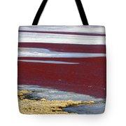 Patterns At Laguna Colorada Tote Bag
