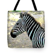 Patterns Of Nature Tote Bag