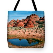 Paw Hole Reflections Tote Bag by Mike  Dawson