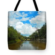 Peace River 4 Tote Bag
