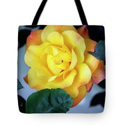 Peace Rose Palm Springs Tote Bag