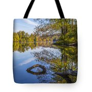 Peaceful Autumn Tote Bag