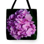 Peaceful Beauty Tote Bag