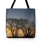 Peaceful Blues And Golds  Tote Bag