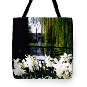 Peaceful Canal Tote Bag