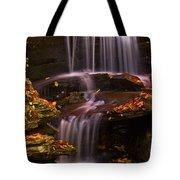 Peaceful Little Falls Tote Bag