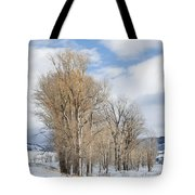 Peaceful Moments II Tote Bag