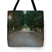 Peaceful Resting Place Tote Bag