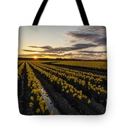 Peaceful Skagit Serenity Tote Bag