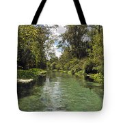 Peaceful Spring Tote Bag